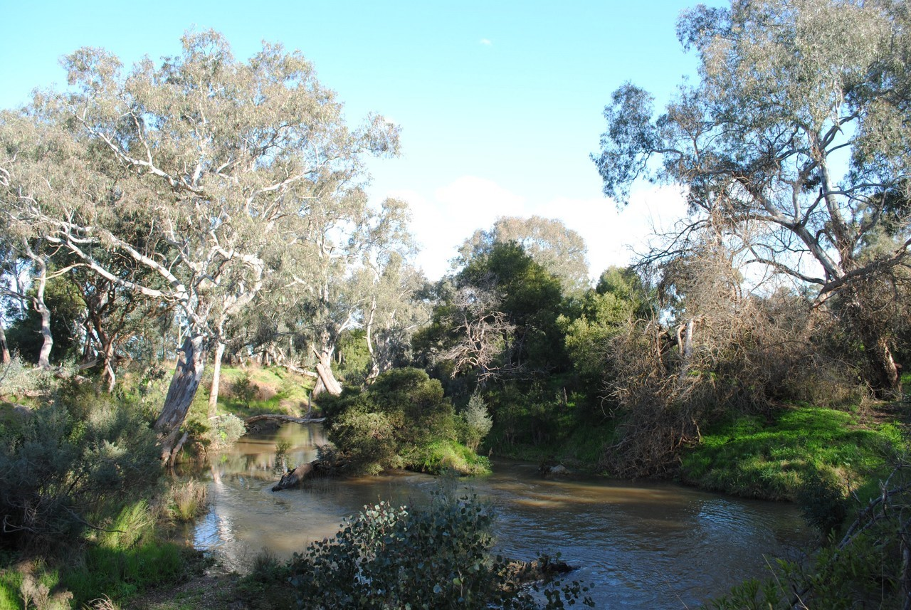 Werribee River at Cobbledicks Ford