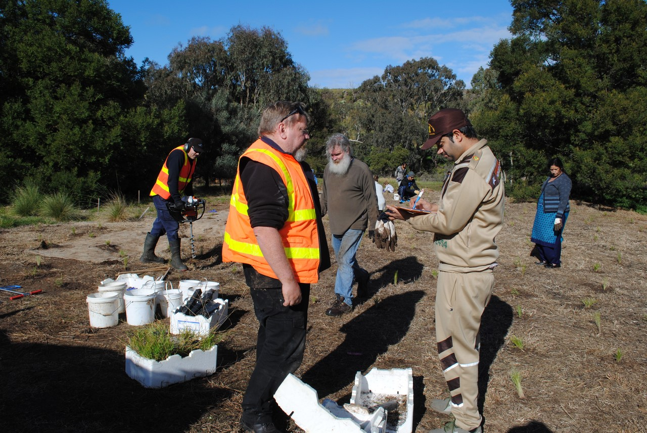 Planting The Understorey At Cobbledicks Ford Reserve   15th July 2017