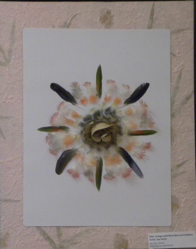 'Birds Nest with Feathers on hand crafted paper' - collage by Sue Petch