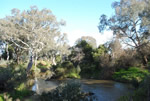 4 Werribee River at CobbledicksFord th